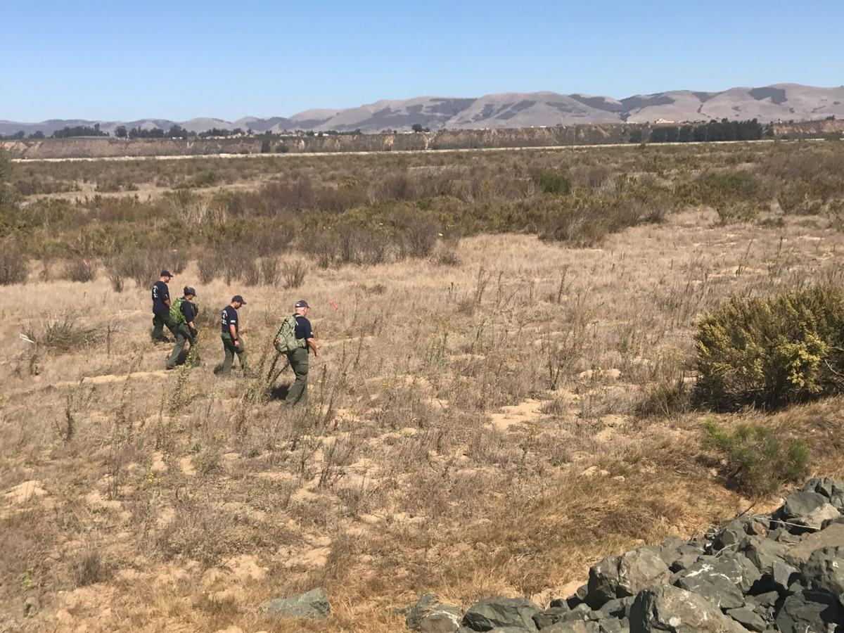 Riverbed search