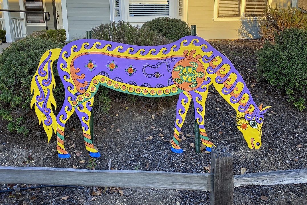 Santa Ynez Painted Horse Project 1