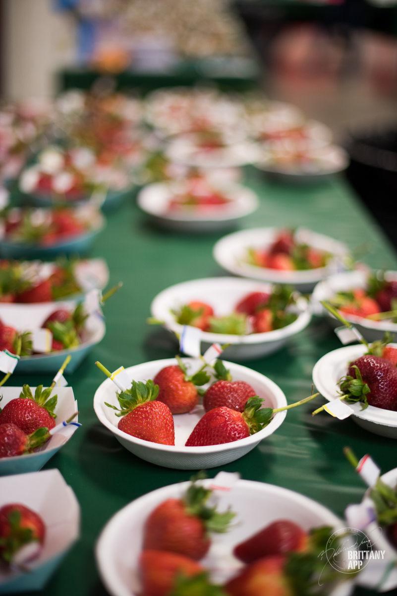 Strawberry Tasting2 (1).jpg