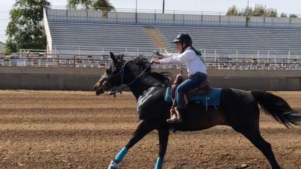 Los Amigos 4-H Club members ride to ribbons at County Fair