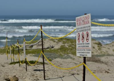 030116 Surf Beach restrictions 2.jpg (copy) (copy)