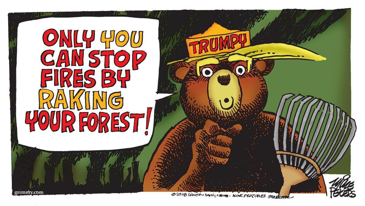 Cartoon: Trumpy the Bear