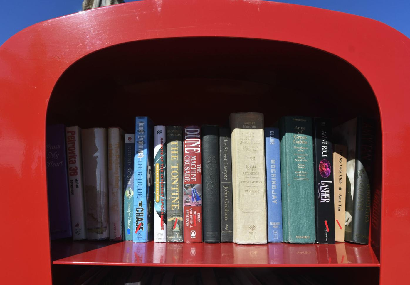 011420 Tiny Libraries exclamation mark 02.jpg