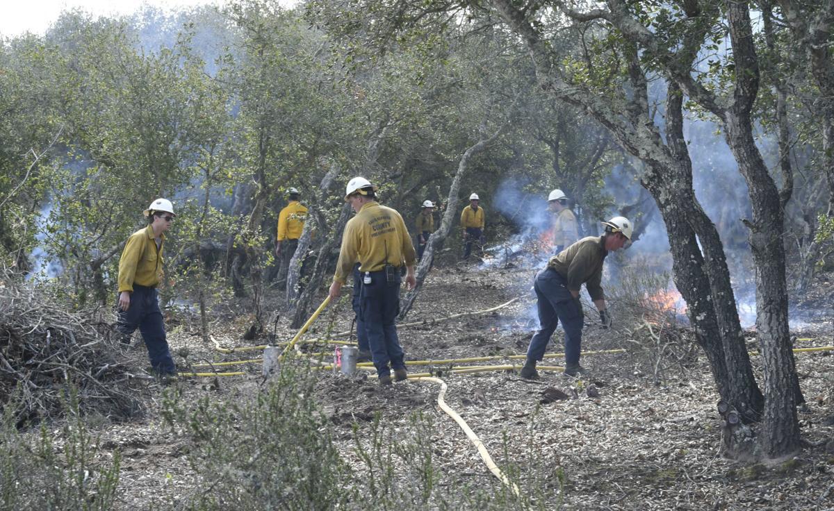 022619 Burton Mesa burn piles 07.jpg