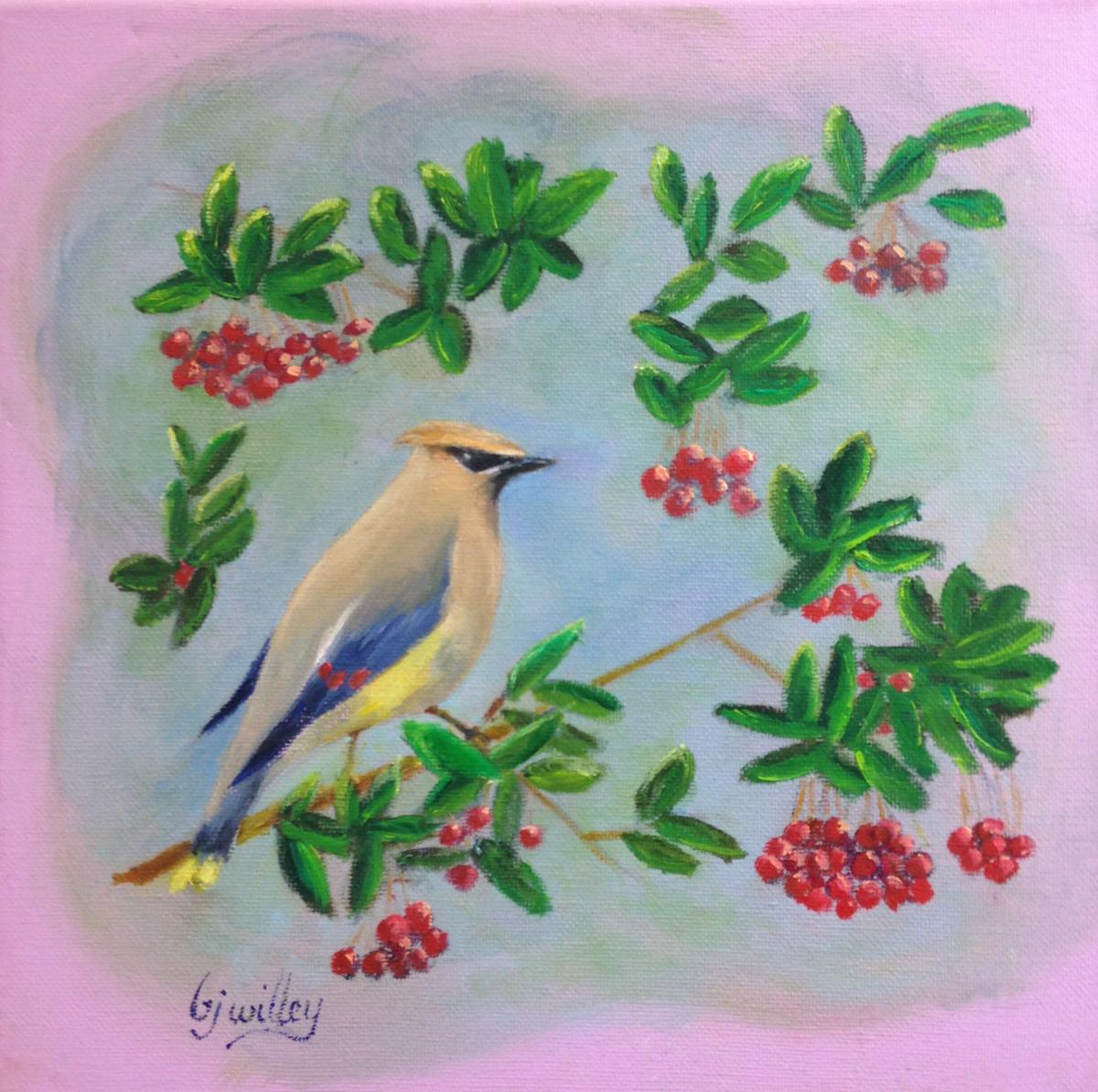 """Cedar Waxwing"" by Barbara Willey"