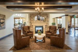 Interior chairs and small fireplace.jpg