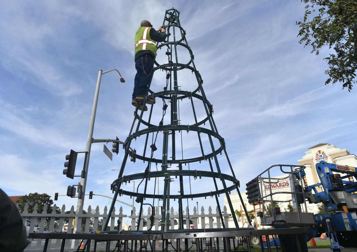 112817 Santa Maria Christmas tree .jpg