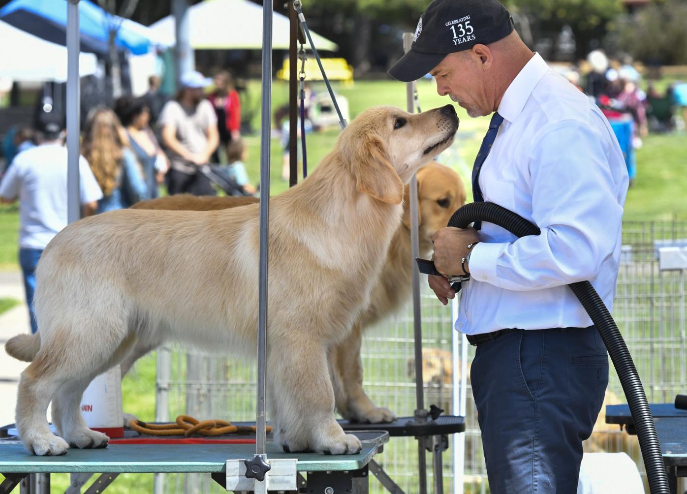 073121 Dog show 03.JPG