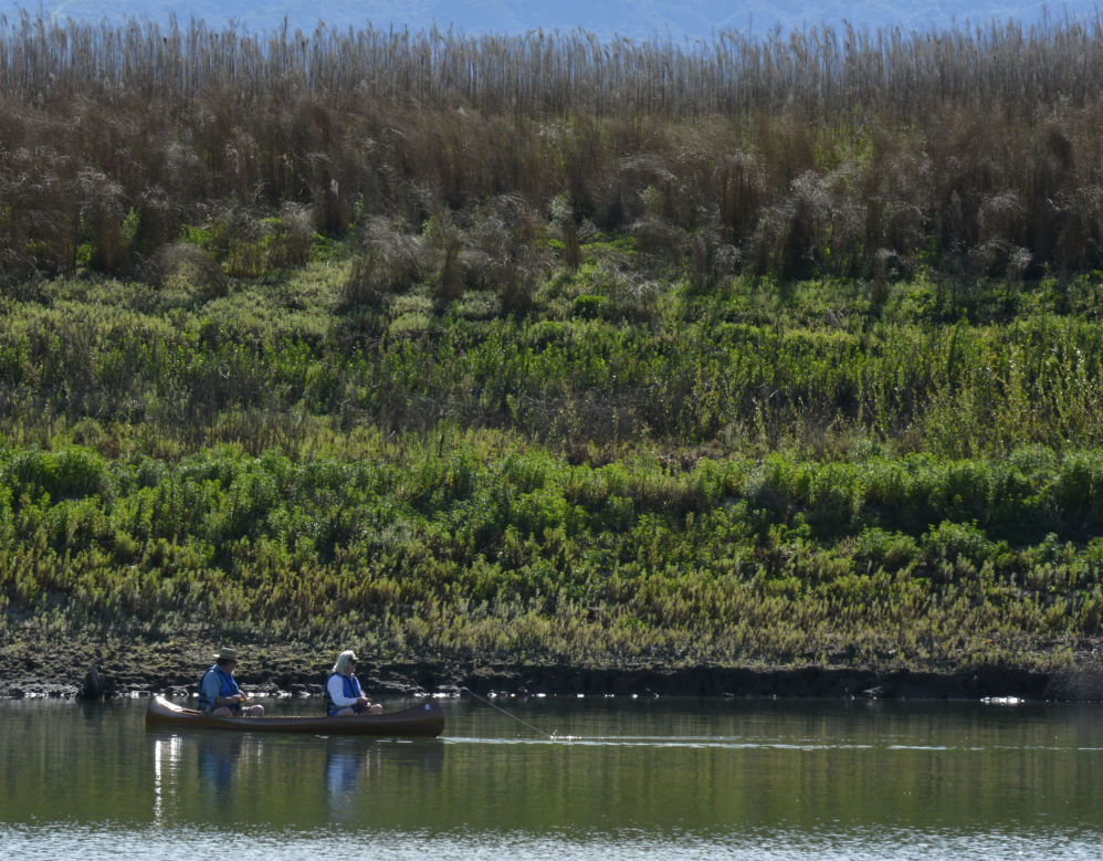 Water reservoirs hitting record lows local news for Cachuma lake fishing