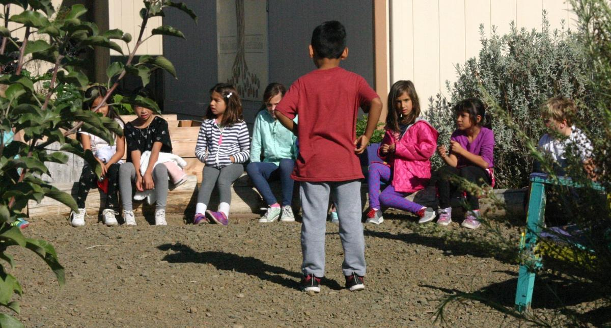 A Garden Grows In Buellton Volunteers Donors Students Bring Vegetable Patch Back To Life