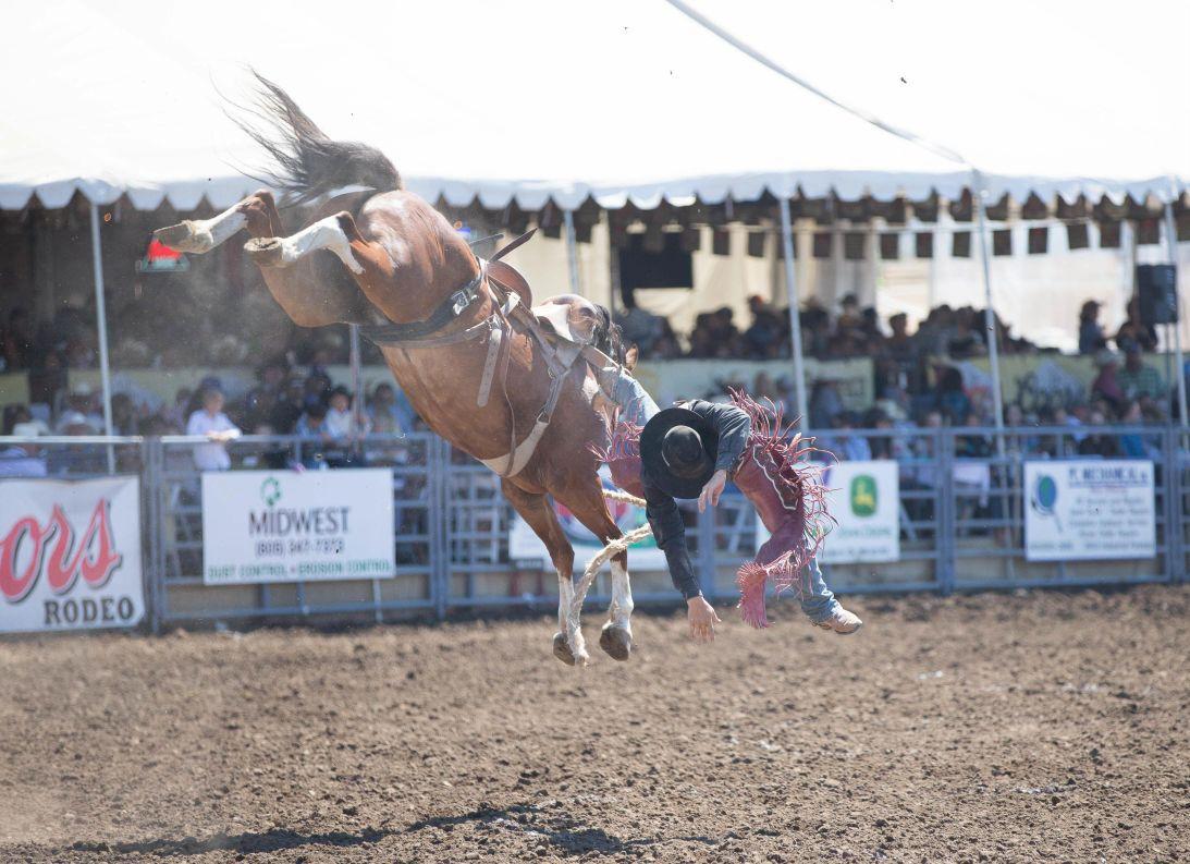 060516 SMT Elks Rodeo Sunday 17.jpg