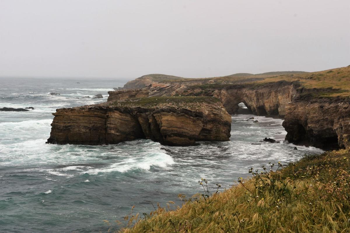 Marine layer 5.jpg