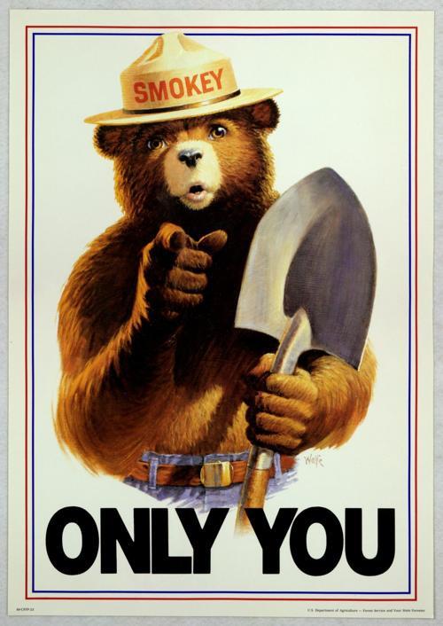 Smokey Bear 'Only You' poster