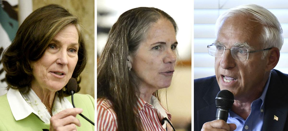 Candidates for the Santa Barbara County Board of Supervisors 3rd District seat