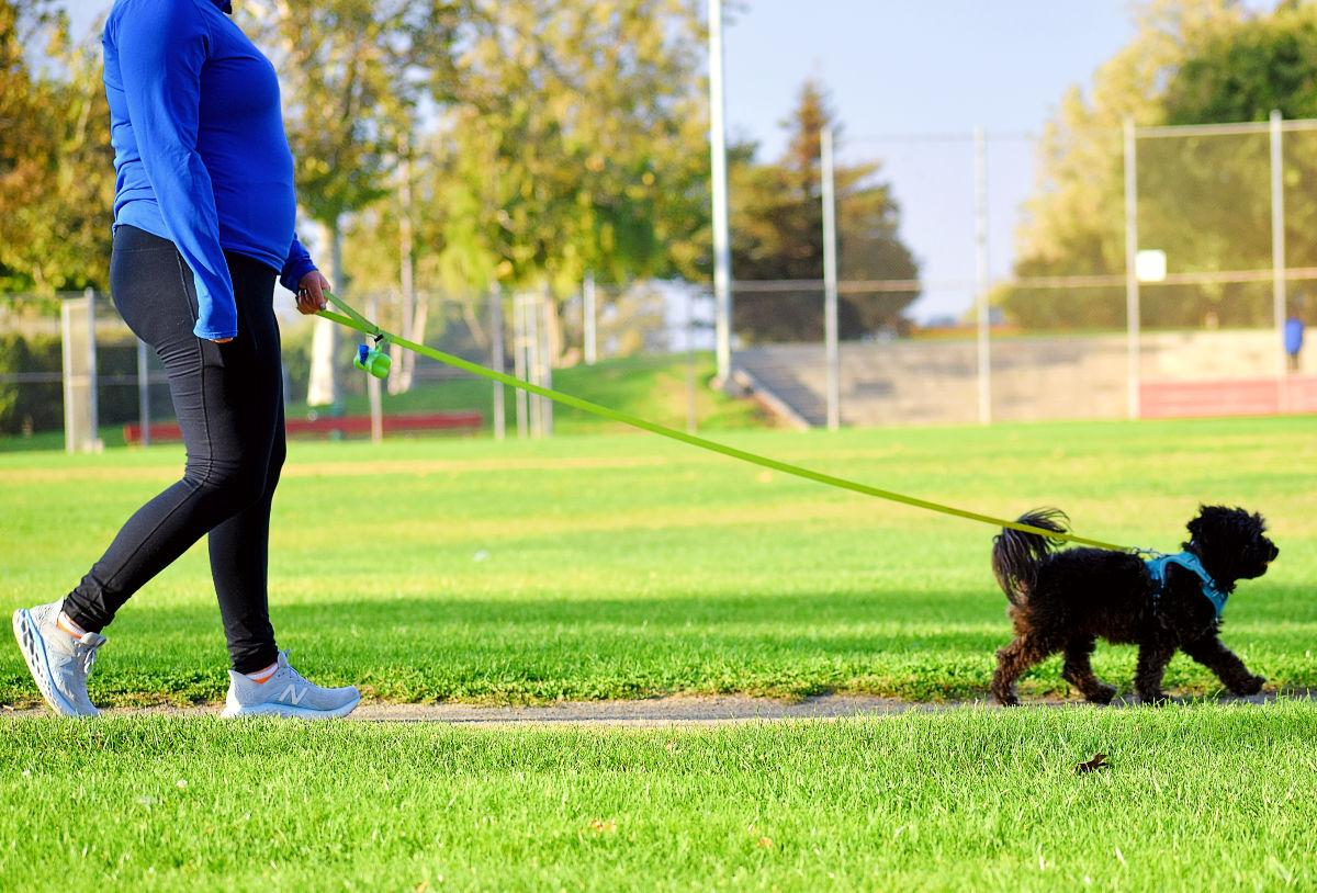 A dog and owner use the designated path along Minami Community Park Friday evening in Santa Maria.