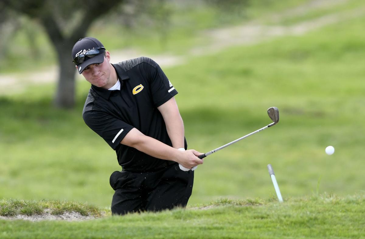 030419 CHS LHS golf 01.jpg