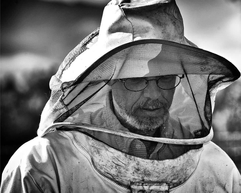 Jim Rice - The Beekeeper