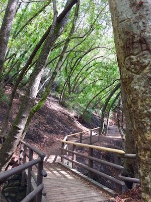 Nojoqui Falls -- a picturesque escape back to nature