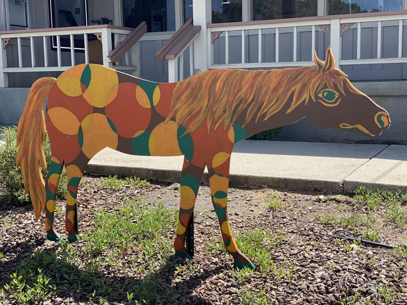 Santa Ynez Painted Horse Project 3