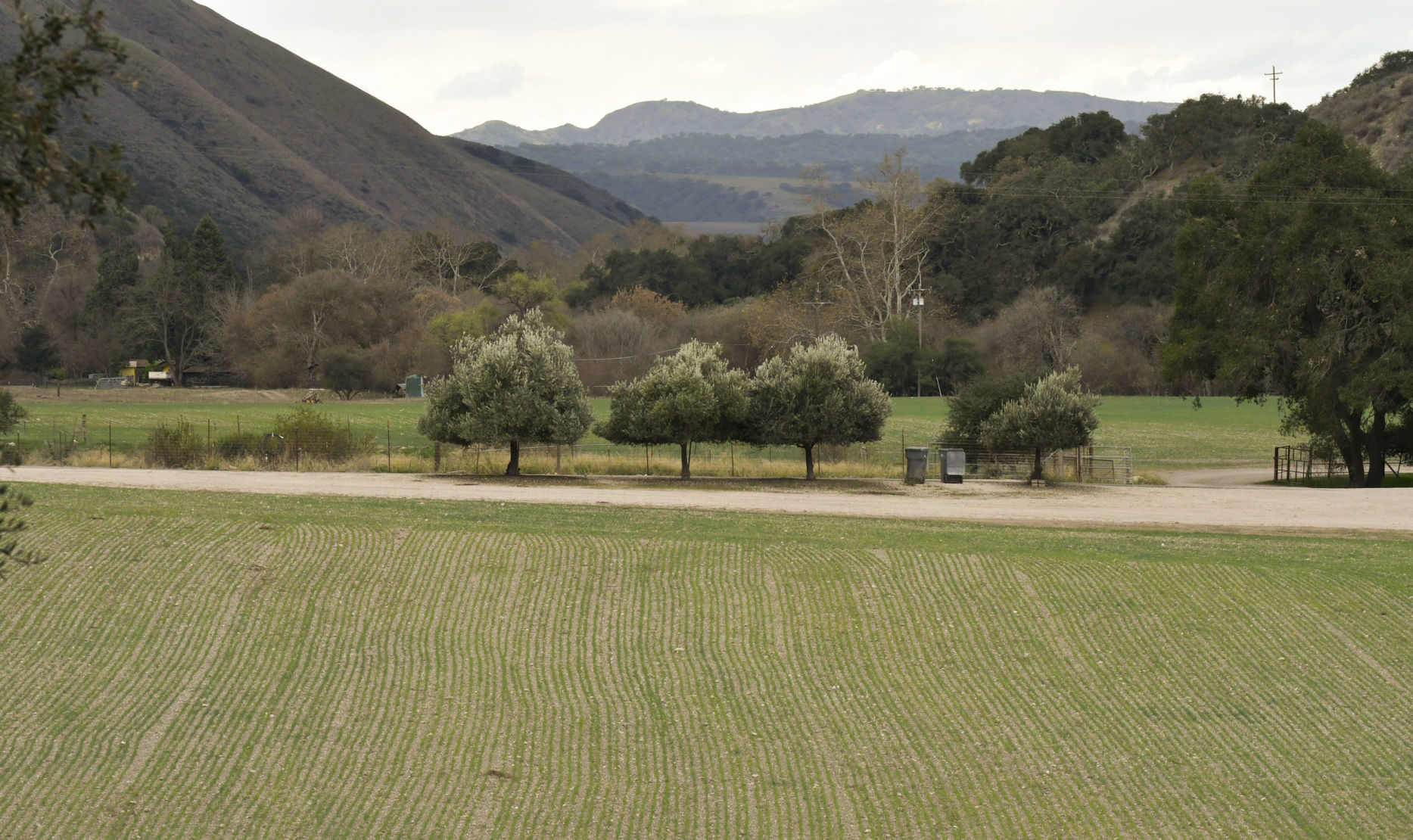 i look forward to hearing from you cover letter%0A Santa Barbara County moves forward on developing groundwater sustainability  plans   Local News   lompocrecord com