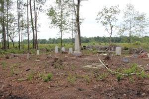 Spring Branch Cemetery graves