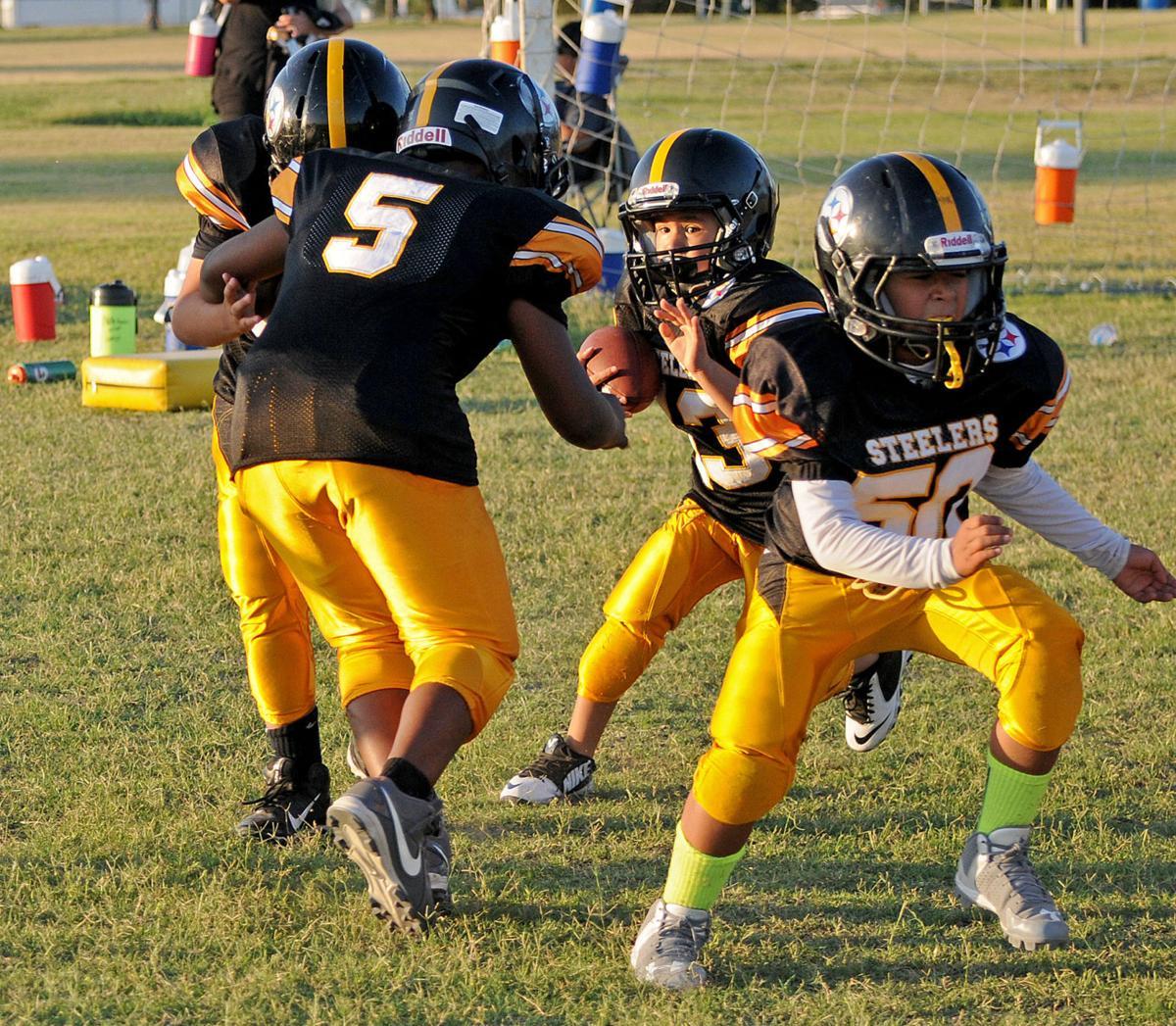 b403af4ce Seguin Steelers youth football | Multimedia | seguingazette.com