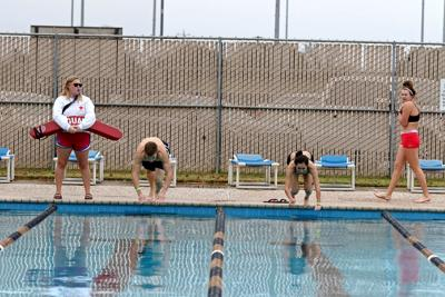 Polor Bulldog Swim