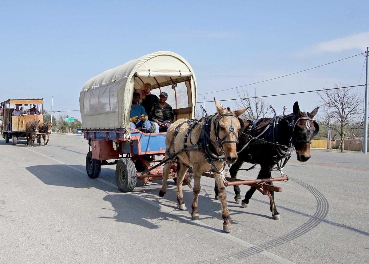 Mesquite Trail Drivers