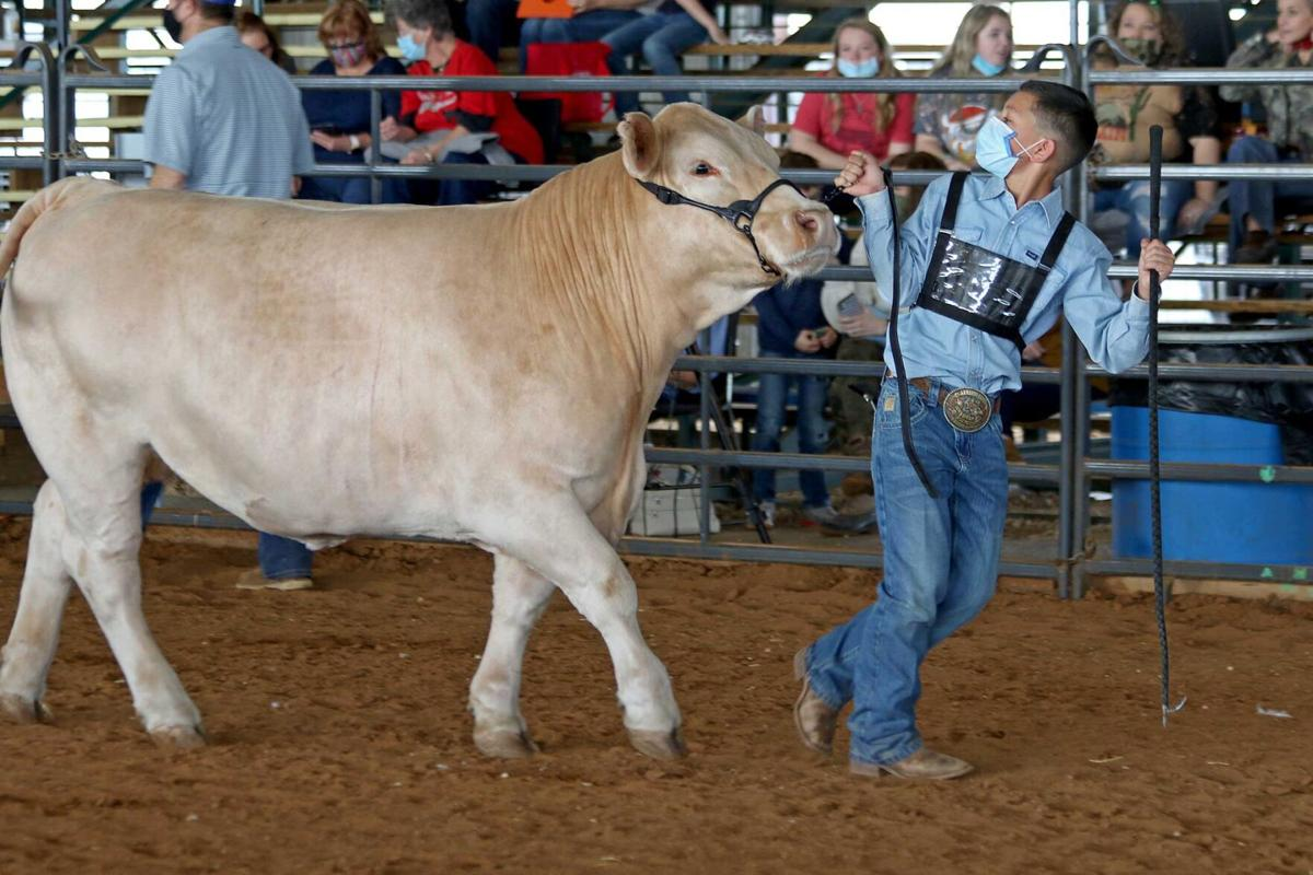 2021 Guadalupe County Youth Show