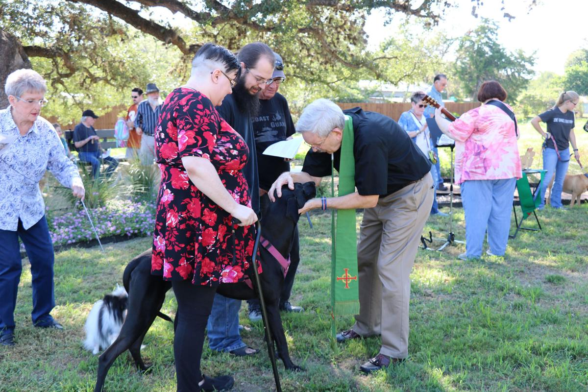 Blessing of the Animals Oct 2019