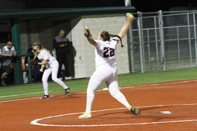Panther pitcher