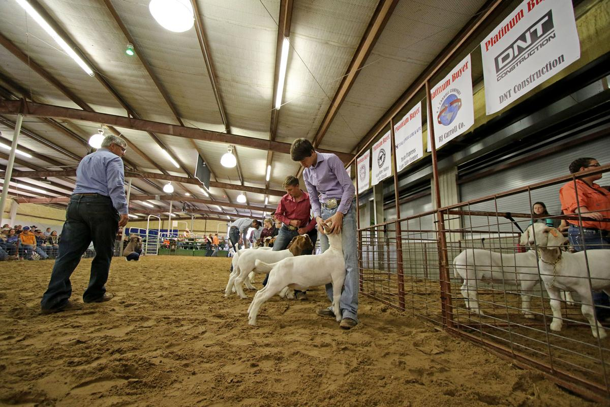 2019 Guadalupe County Youth Show