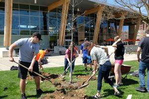 VIDEO: BGSU celebrates Earth Week with tree planting