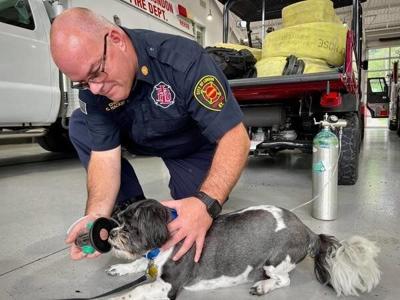 London Fire Department acquires pet life-saving equipment