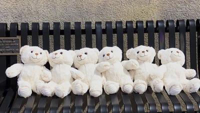 Community invited to join in on teddy bear hunt