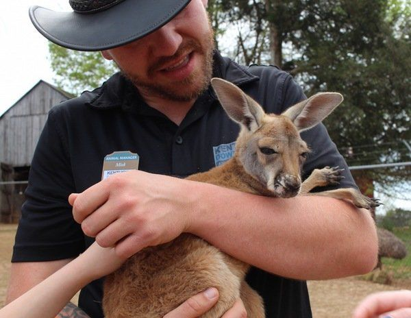HEART OF THE BLUEGRASS: Kentucky Down Under: Park provides visitors with unique animal interactions