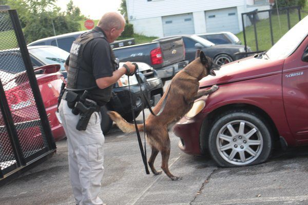Citizens Police Academy session showcases K-9 unit's abilities