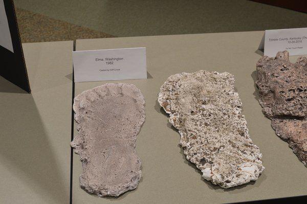 Kentucky Bigfoot researcher displays evidence at Library