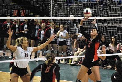 NAIA Volleyball Tournament: Bulldogs fall in opening match | Sports