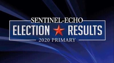 Echo election graphic