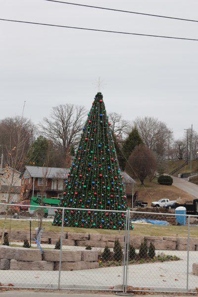 Tree lighting set for Thursday