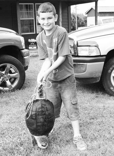 7-16 neighbor turtle boy 1.jpg