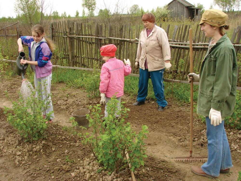 Farm Coalition  Boosting  Food Security