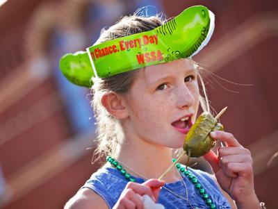 Pickle Festival 2015