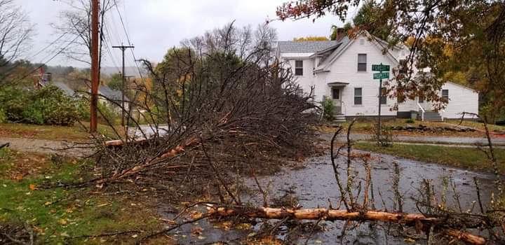 Tree down in Keene