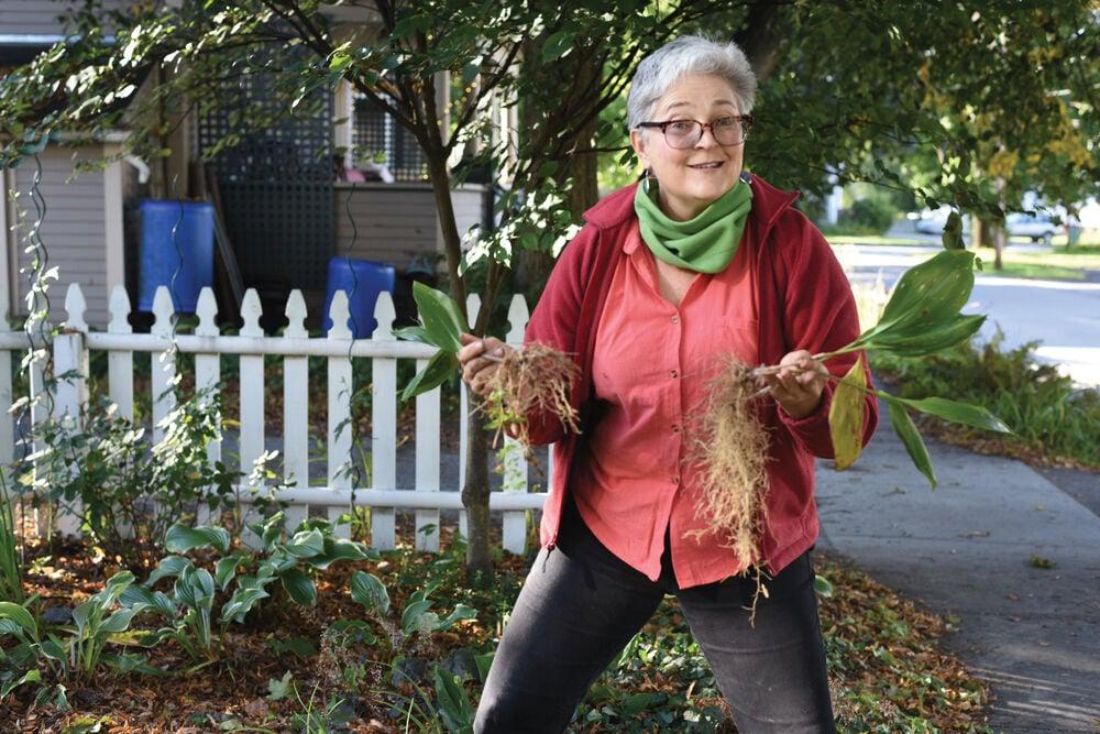 Healthy Gardens, Healthy Habits