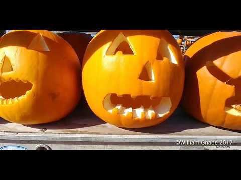 Monadnock Pumpkin Festival
