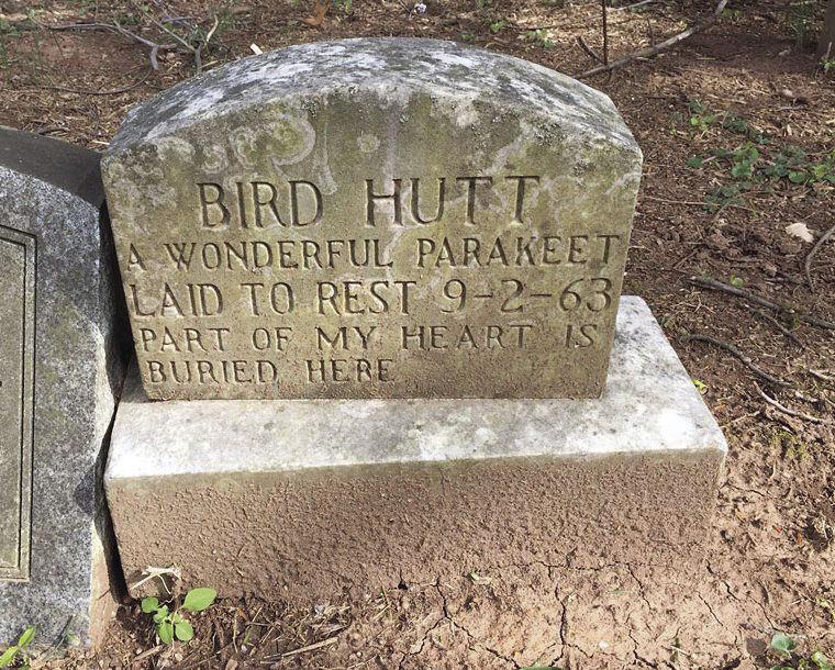 A pet headstone at  Aspin Hill Memorial Park.