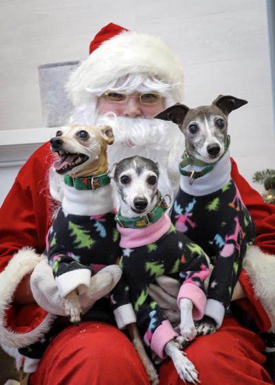 20201127-MAG-pet photos with santa3