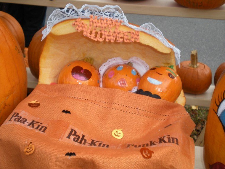 User Submitted Pumpkin Festival photo